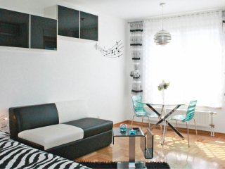 Apartment studio Wizard Zagreb/close to Main bus station/WiFi/parking