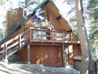 Ski In/Ski Out Slope side cabin - Chalet #23
