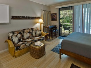 WAILEA SPACIOUS KING STUDIO - NEXT AVAIL:   JUL 17-19; 23-27  $105/NT