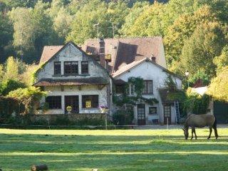 Villa rustique avec parc en Vallee de Chevreuse
