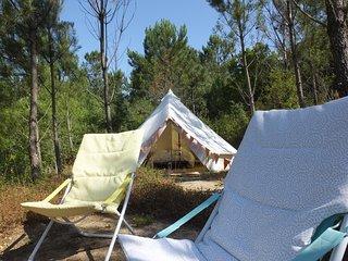 Dolittle Holidays - Tenda de Pinheiro