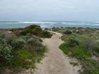 Track to the beach - 100m from the house!