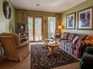 Woodsy Wonder - Adorable 2 bed/2 bath unit at Notch, steps away from pool!