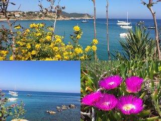 Stunning seaview flat frontline / superbe appartement vue mer La Fosca beach
