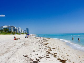 OCEANFRONT BLDG, DELUXE 1 BR, PRIVATE BEACH, CLOSE TO SOUTH BEACH, GYM, POOL