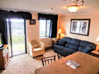 1BR/1BA Ski In/Out with Wi-Fi - Next to Village & Ballhooter!! NICE!!