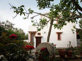 Dionysos & Sophia's Loft