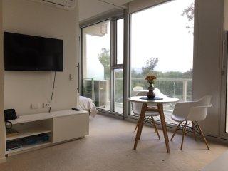 Luxurious Apartment Near City