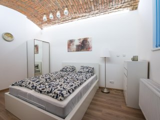 Newly renovated cozy flat close to historic center