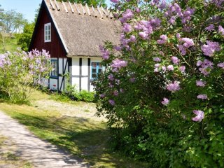 Old Brewery cottage in beautiful Osterlen