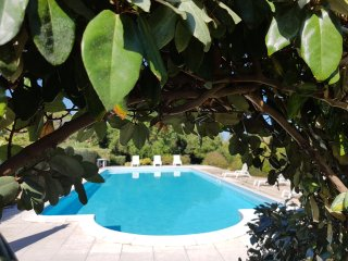Villa Oliva verde 2 with swimming pool
