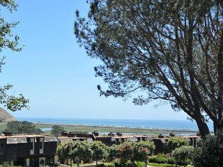 Del Mar Summer Rental - Spectacular Ocean View!