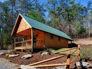 Laurel Mountain Retreat - Red Bird
