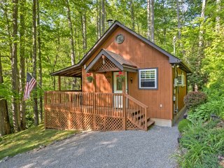 New! Cozy 1BR Maggie Valley Cabin w/Deck & Hot Tub