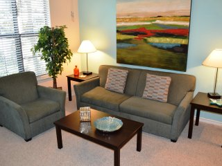 Beautiful 2 bedroom / 2 bath furnished apt. near MD Anderson & Hermann Park