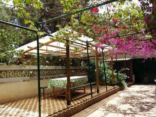 Casa dei Pini con bel Giardino esposto ad Oriente
