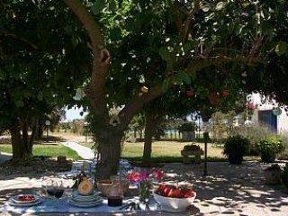 Cenar al aire libre en el patio.