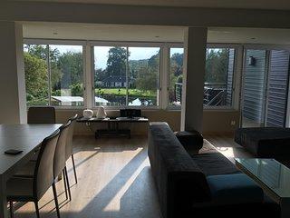 La Maison du Lac (2) : 110m²,  grand jardin, 2 terrasses, vue panoramique