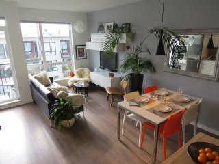 The Orange Peony-Chinatown One Bedroom Condo