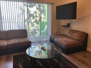 1bd/1bath, brand new apt fully furnished /sofa bed