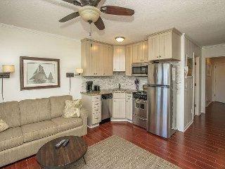 Seaside Villa 331 - 1 Bedroom 1 Bathroom Oceanside Flat  Hilton Head
