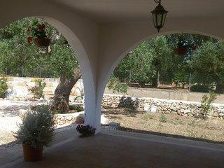 ampia veranda con vista sugli ulivi secolari