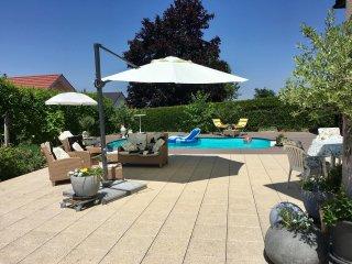 ap. 2,5, 20 min Montreux,Vevey,  dans Villa luxueuse(piscine + jacuzzi)