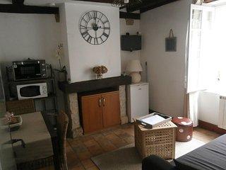 joli appartement typique centre de Blois