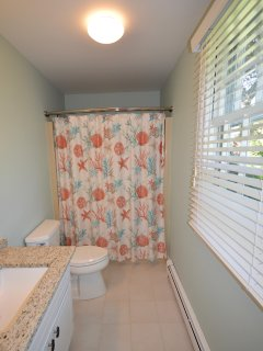 Full ensuite with stand up shower/ tub combo