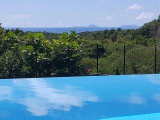 Superbe villa contemporaine avec piscine et spa au Gosier
