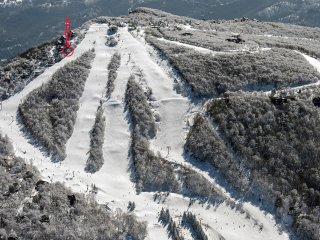 SiSo 5350' (Ski In Ski Out / Elevation 5350'