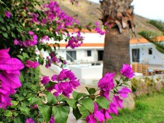 Awesome Villa in Los Gigantes with Palm Garden Overlooking Atlantic Ocean