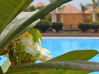 Amazing Detached Villa , El Duque