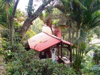 Eagles Nest - Eco-lodge & Retreat Vilcabamba