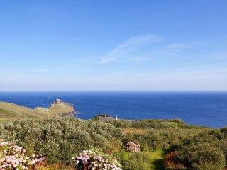 CHY BARNETT secluded house, peninsula headland sea views, garden, near St Ives