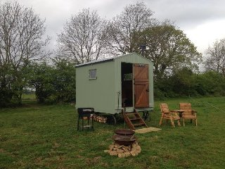 Blueberry shepherds hut