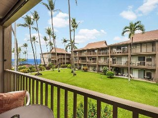 Kona Isle C24 Oceanview, 2nd floor, Wifi, Fantastic price!
