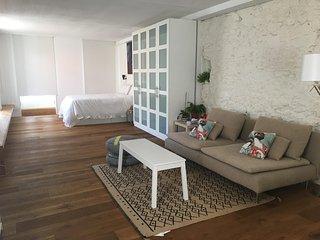 Apartamento tipo Loft Nuevo en Centro de la ciudad