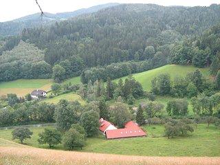 Bauernhof, 19.Jh, moderner Standart, viel Platz