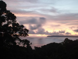 Beautiful house in the jungle peace and great ocean view.  -2 bedrooms, 2 big be
