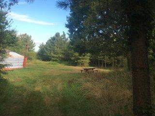 tranquillité : pas de voisins une clairière calme avec la nature