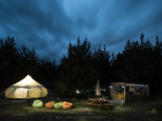 Glamping at 'Wilding Pines', Lake Wanaka, NZ
