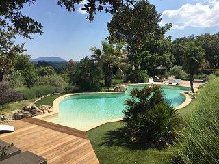 Mas provencal - piscine chauffee - Les Romarins - Hameau de Pignelle