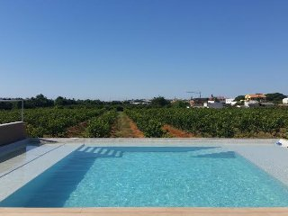 FABOLOUS VILLA T2 WTH PRIVATE GARDEN AND LEMONS VIEW