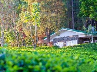Vista Greendale Bunglow