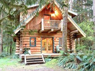 Snowline Cabin #10 - Log cabin at its best! Free Wi-Fi!