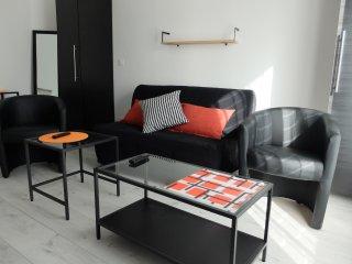 T2 apartment with balcony quiet - Pau center pedestrian historic district