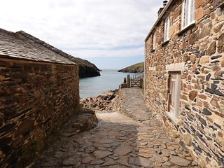 1A Fish Cellars, Port Quin