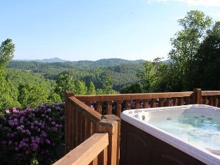 CABIN INN - Long Range Mtn & River Views W/Hot Tub, WiFi, Foosball & Pets Ok!
