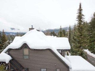 B Skier's Plaza-walk 2 dinner-TRUE Ski in/out-30 mts to Village Run-4 bed/4 B